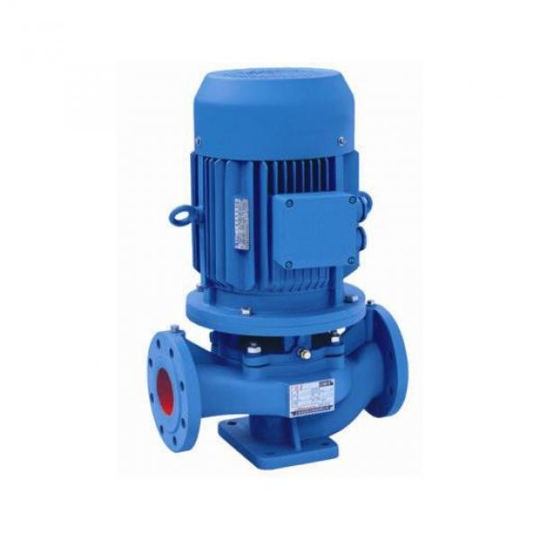 DAIKIN RP15C23H-22-30 Rotor Pump #1 image
